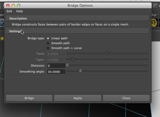 bridgetoolselected-2013-02-9-20-17.jpg